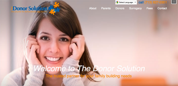 screenshot of donor solution site